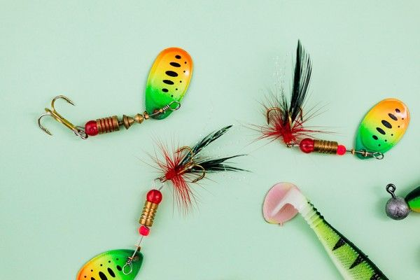 Flybait