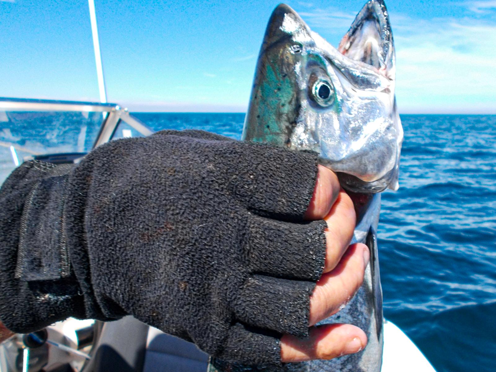 Handline_Fishing_00