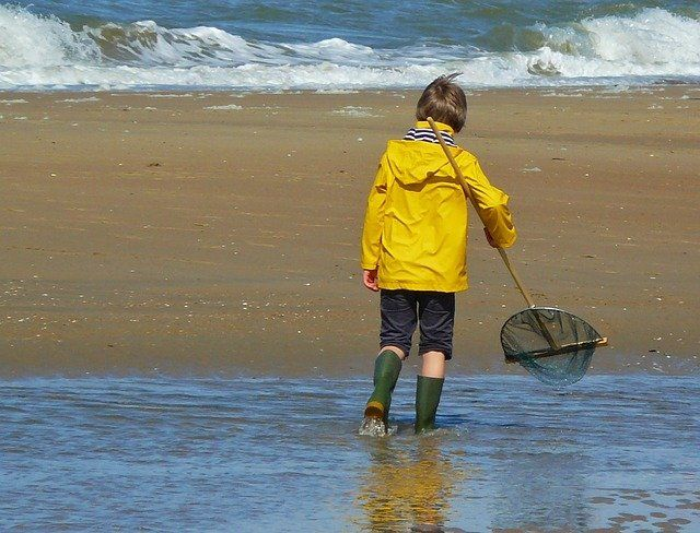 A young kid in a yellow jacket holding a net walking on the beach