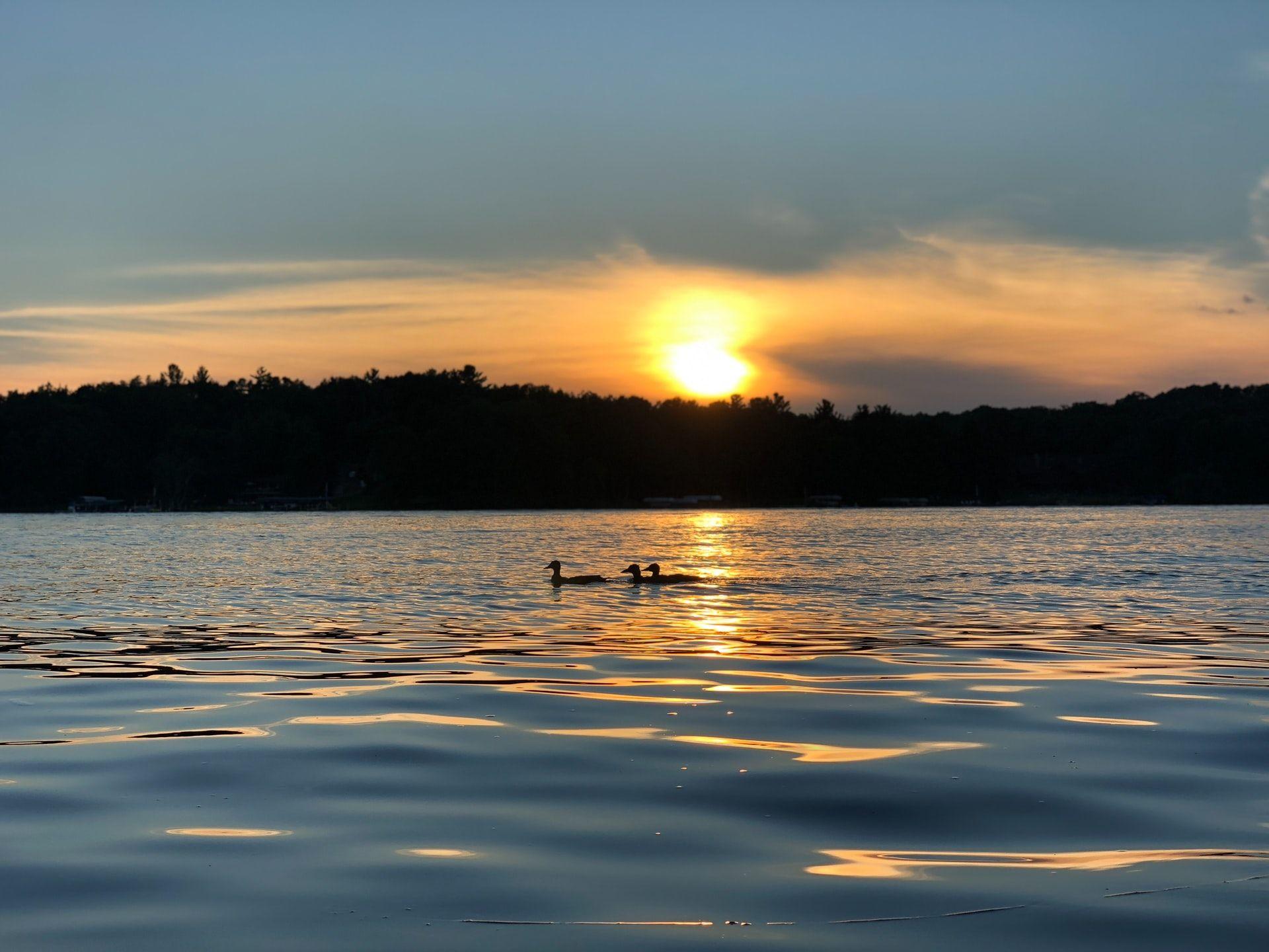 Minnesota Lake Fishing