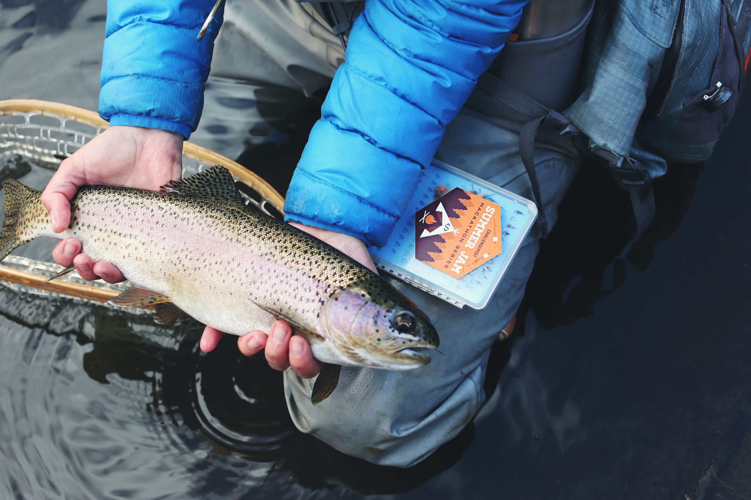 Person wearing a blue down jacket holding a gray and beige fish